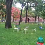 Chairs at Harvard