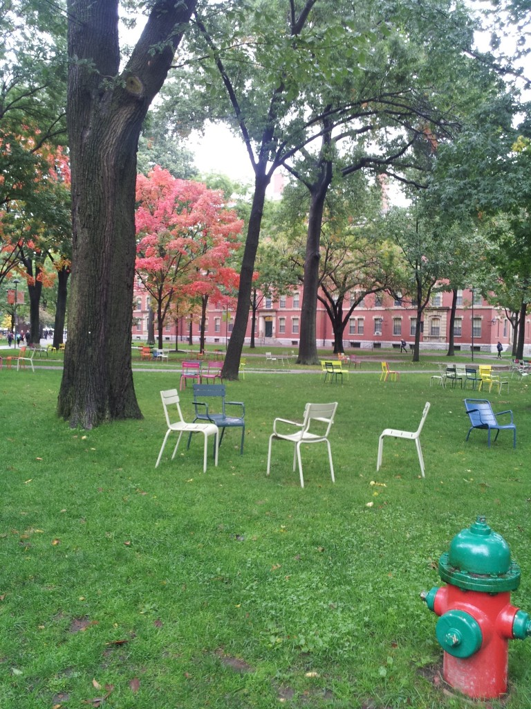 Chairs at Harvard